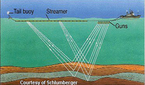 Single streamer used in 2D seismic surveys